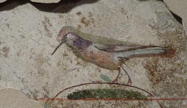 bird-fresco