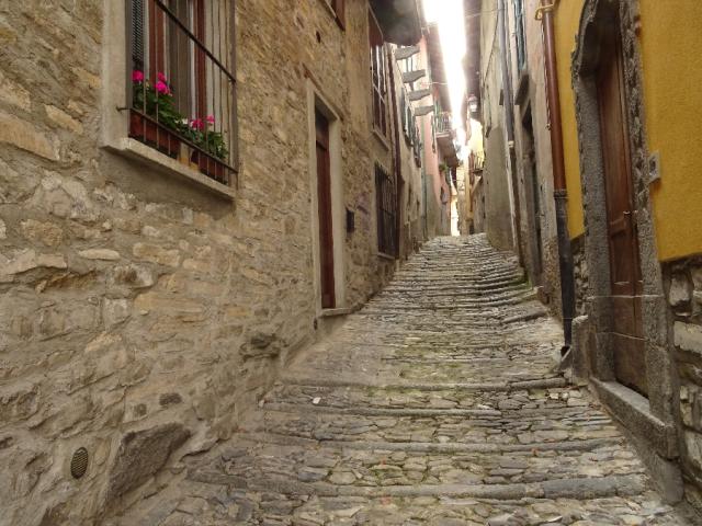 Molina street