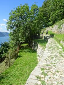 terraces 1