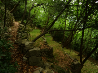 path by terracing