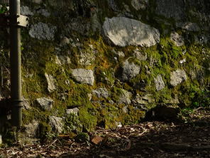 Mossy stone wall, path to Brunate