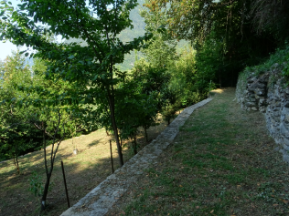 Built to last - dry stone walls from Moltrasio stone define terraces that are still well maintained in parts