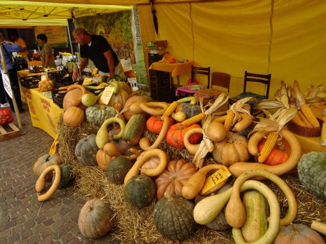 Fiera Sant Abbondio - Pumpkins