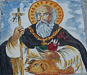 saint anthony with pig, naples