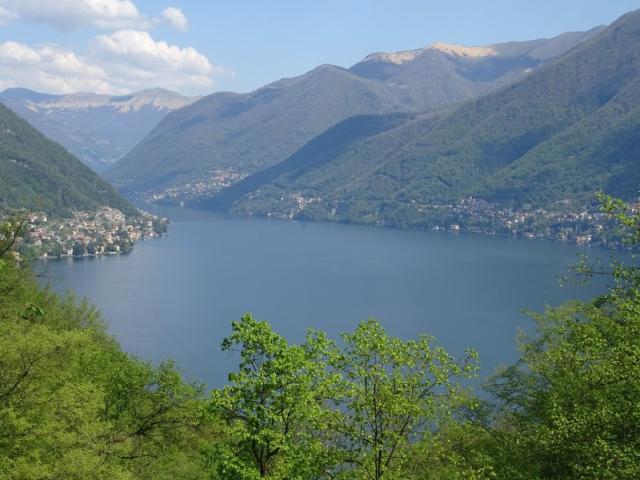 Pliniana view
