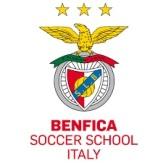 Benfica Soccer