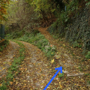 As Via Raimondi turns to gravel, you will see the hiking path lead off to your right.