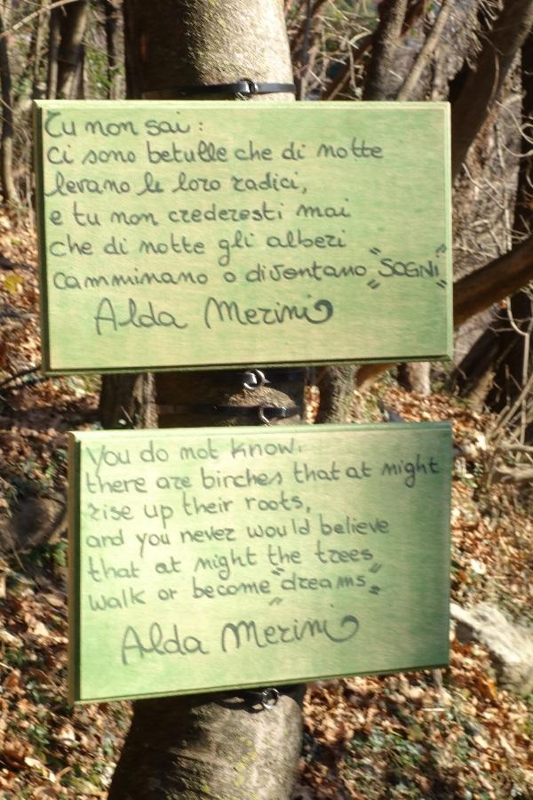 Merini Poem